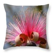 Pink Crown Throw Pillow