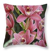 Pink Cymbidium Orchid #3 Throw Pillow