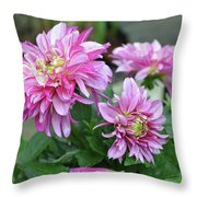 Pink Dahlia Flowers Throw Pillow