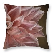 Pink Dahlia In Bloom Throw Pillow