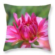 Pink Dahlia Beauty Throw Pillow