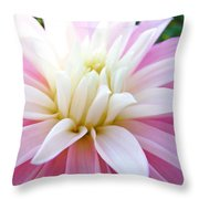 Pink Dahlias Art Dahlia Flowers Giclee Prints Baslee Troutman Throw Pillow