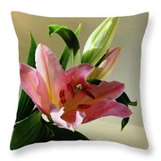 Pink Daylily Throw Pillow