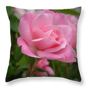 Pink Delicacy  Throw Pillow
