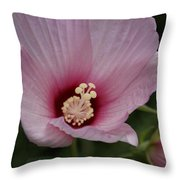 Pink Delicate Hibiscus Throw Pillow
