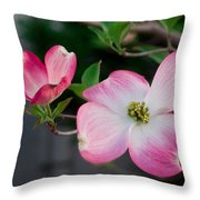 Pink Dogwood In The Morning Light Throw Pillow
