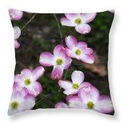 Pink Dogwood Mo Bot Garden Dsc01756 Throw Pillow