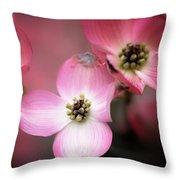 Pink Dogwood Throw Pillow