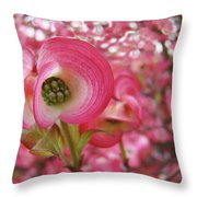 Pink Dogwood Tree Flowers Dogwood Flowers Giclee Art Prints Baslee Troutman Throw Pillow