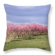 Pink Pear Trees Throw Pillow