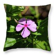 Pink Downy Phlox Wildflower Throw Pillow