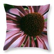 Pink Echinacea Throw Pillow