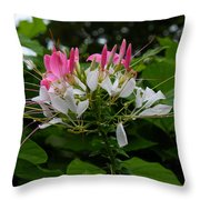 Pink Explosion Of Spring Throw Pillow