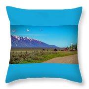 Pink Farmhouse In Mormon Row Throw Pillow