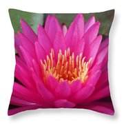 Pink Flame Waterlily Throw Pillow