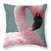 Pink Flamingo Profile 2 Throw Pillow