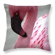Pink Flamingo Profile Throw Pillow