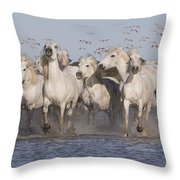 Pink Flamingoes And White Horses Throw Pillow