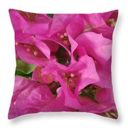 Pink Flower Composition Throw Pillow