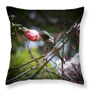 Pink Flower Hummie Throw Pillow