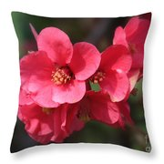 Pink Flowering Quince Throw Pillow