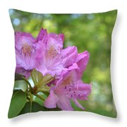 Pink Flowering Rhododendron Bush In Full Bloom Throw Pillow