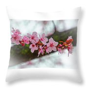Pink Flowering Tree - Crabapple With Drops Throw Pillow