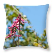 Pink Flowers At Coba Throw Pillow