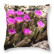 Pink Flowers In The Desert Throw Pillow