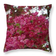Pink Flowers On Blooming Tree Throw Pillow