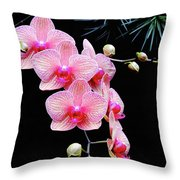 Pink Flowers Pink Vein Black Background Throw Pillow