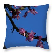 Pink Flowers With A Touch Of Ice Throw Pillow
