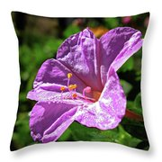 Pink Four O'clock Throw Pillow