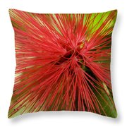 Pink Fringe Throw Pillow