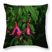 Pink Fushia Throw Pillow