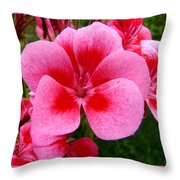 Pink Geranium Blossom Throw Pillow