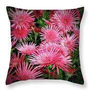 Pink Gerbera Heaven Throw Pillow