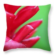 Pink Ginger Throw Pillow