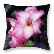 Pink Gladiola In Peru Throw Pillow