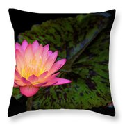 Pink Glow Throw Pillow