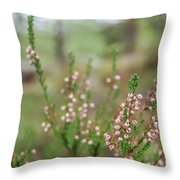 Pink Heather, Calluna Vulgaris, In Foggy Forest Throw Pillow
