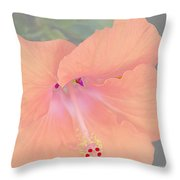 Pink Heavenly Hibiscus Throw Pillow by Donna Bentley