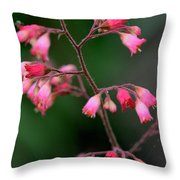 Pink Heuchera Flower 1 Throw Pillow