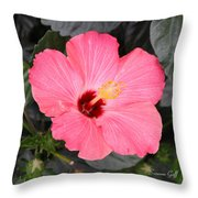 Pink Hibiscus II Throw Pillow