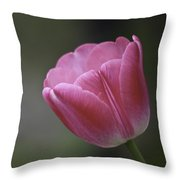 Pink Impression Squared 1 Throw Pillow