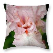 Pink Iris Study 15 Throw Pillow