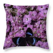 Pink Kalanchoe And Black Butterfly Throw Pillow