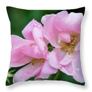 Pink Knockout Rose After The Rain Throw Pillow