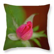Pink Knockout Rose Throw Pillow