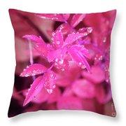 Pink Ladies Throw Pillow
